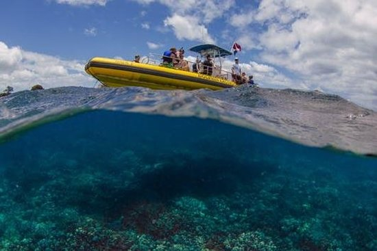 Waianae Coast Snorkel Cruise with...