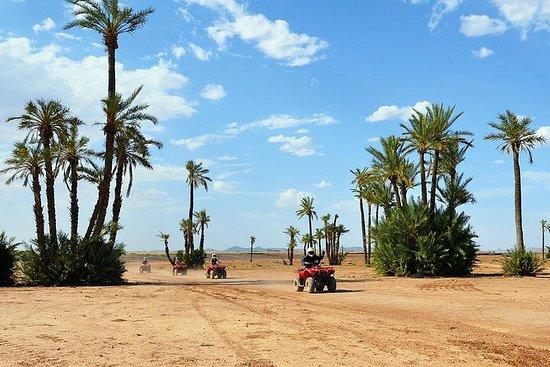 Marrakech ørken og Palm Grove Quad...