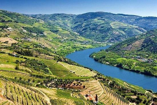 Vintur i Douro-dalen med lunsj...