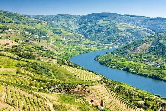 Douro Valley historiske tur med...