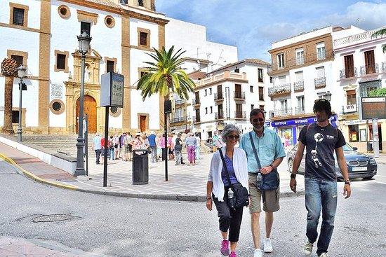 Excursion à Ronda et aux villages...