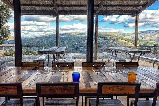 私人旅遊:蒙塔爾奇諾品酒體驗