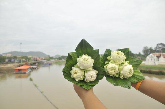 Uthai Thani Province, Thailand: ดอกใม้งาม ฝีมือชาวแพ เเม่น้ำสะเเกกรัง