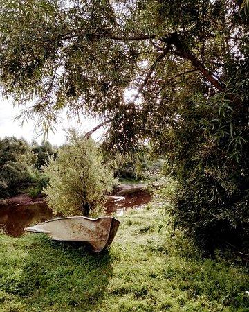 Kolpashevo, Rusia: На берегу обской протоки