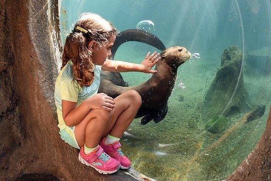 Entrada general al zoológico de Miami...