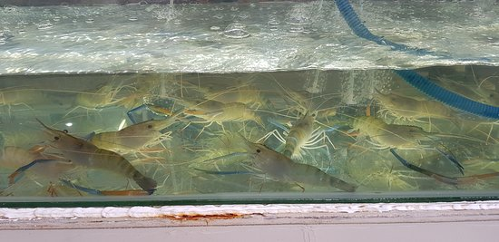 king seafood pattaya tayland