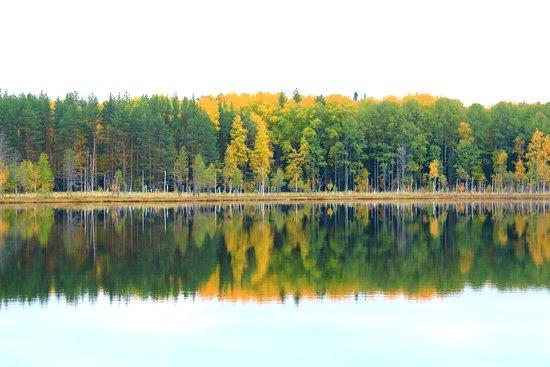 Kolpashevo, รัสเซีย: таежное озеро
