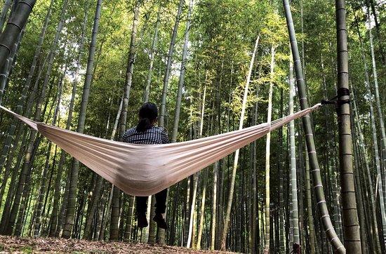 Four Seasons Bamboo Forest Wakayama Farm: ハンモック体験。非日常空間でリラックス。多忙な毎日から解放されて、ゆったりとした時間を過ごしてみませんか? 入場料と別途500円(1時間)頂戴いたします。