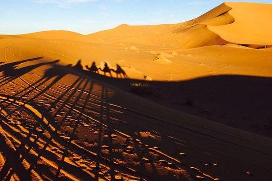 3 dager Sahara Shered Trip