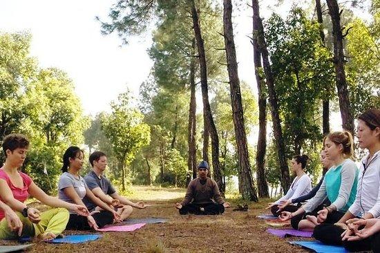 Nepal Yoga Trek-10 Days