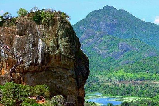 Day tour to Sigiriya & Dambulla from...