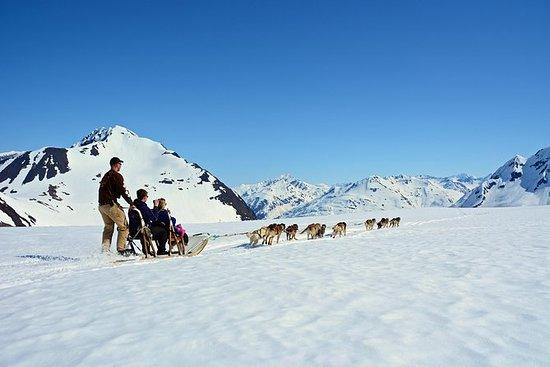 Summer Glacier Dogsledding Tour...