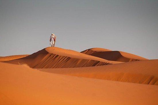 Excursión de un día por el desierto...