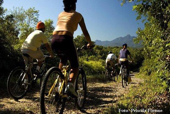 Cyclotourisme dans les villages ruraux au milieu de la forêt...
