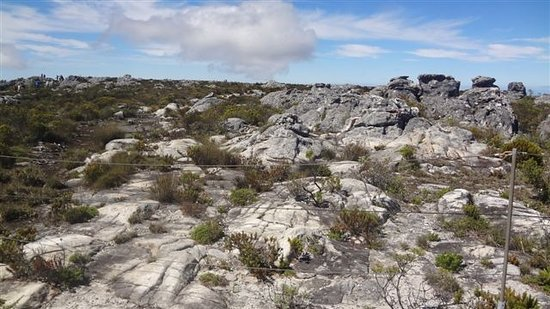 Table Mountain: Beautiful to look at