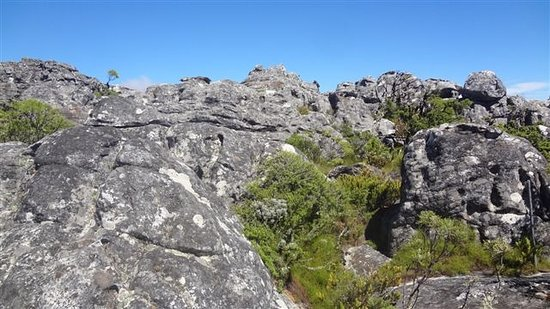 Table Mountain: Could almost rock climb right there