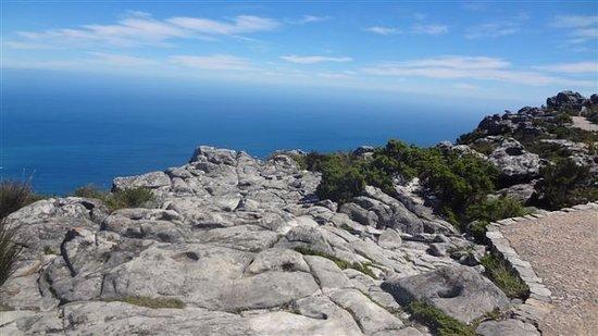 Table Mountain: Rock platform