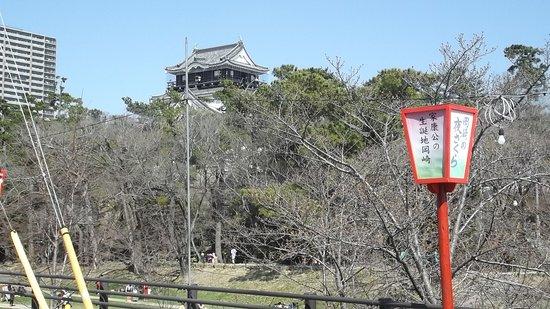 岡崎城遠望