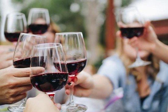De beste wijntour om Fiano di ...