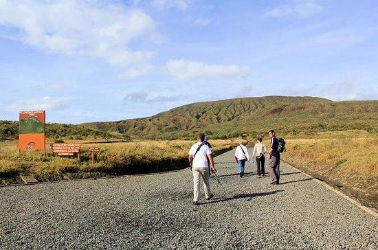 Mt. Longonot Hiking Adventure: MT LONGONOT HIKING ADVENTURE