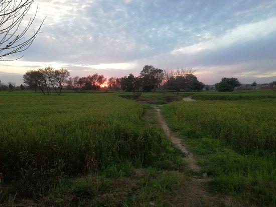 Pindi Gheb, ปากีสถาน: I love Shahbazpur