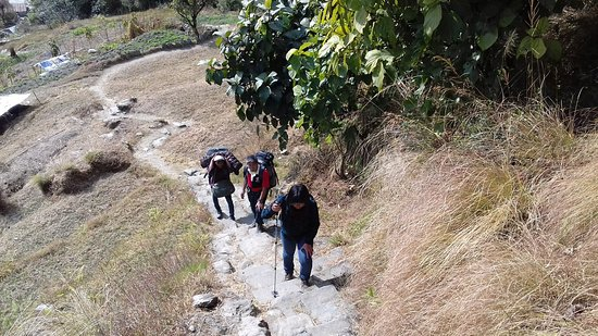 Mountain King Treks And Expedition: Annapurna base camp trekking