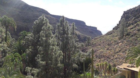 Palmitos Park: Le site
