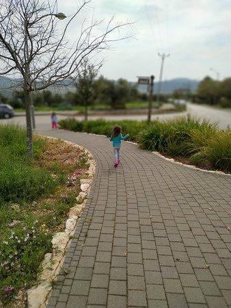 Moran, Israel: מורן