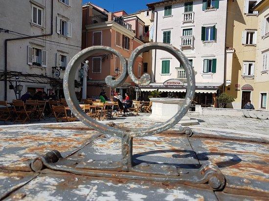 Fritolin pri Cantini Image