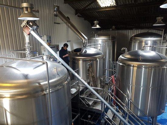 Dorking Brewery