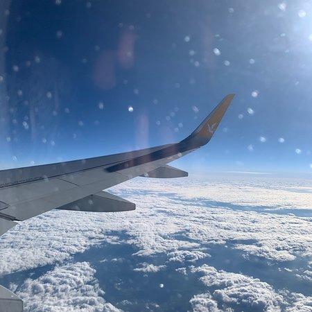 Pegasus Airlines Fotografie
