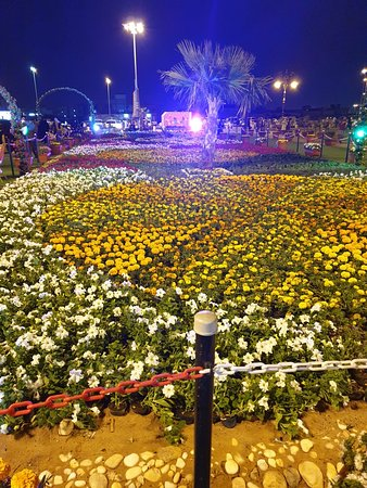 Hafar Al-Batin, ערב הסעודית: The Flowers Festival