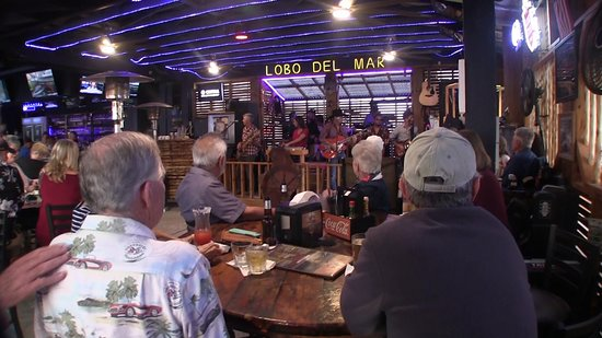 Live Music every night at Lobo Del Mar Cafe