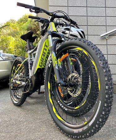 WaihekE-Bikes