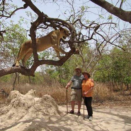 Banjul, Gambia: Bako Tours the safari specialist