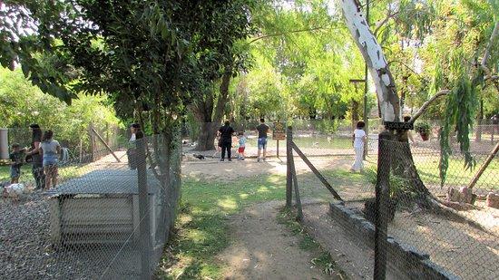 Chacra San Isidro Labrador: Todo el parque de la chacra esta cuidado y atendido