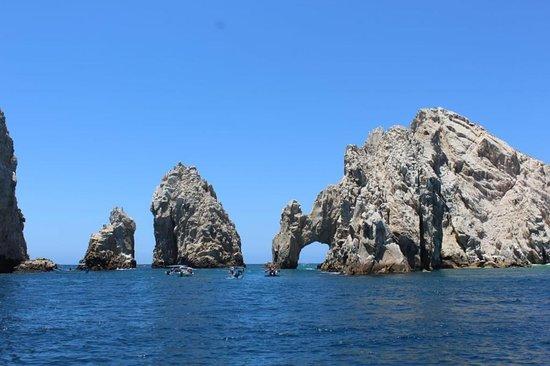 Baja Cabo Advisor
