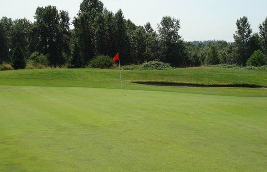 Surrey, Canadá: Best shot of the day . . . Long hole and left meself with this birdie kick.