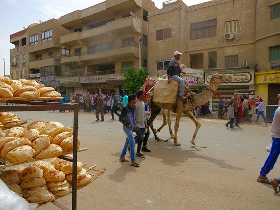 Giza, Mısır: Five hundred feet from the Great Pyramid.