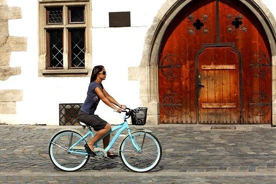 Tour di Stoccolma in bici