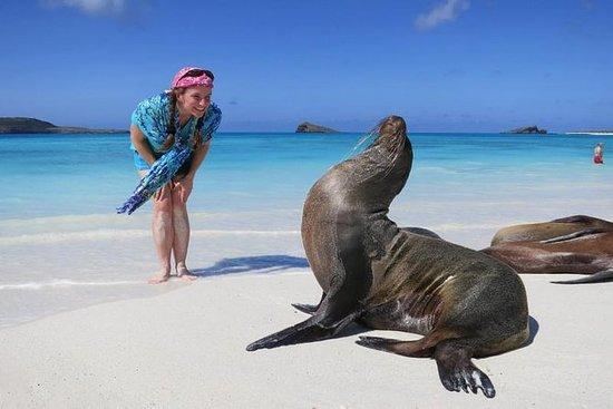 Galapagos Top Excursions Pass