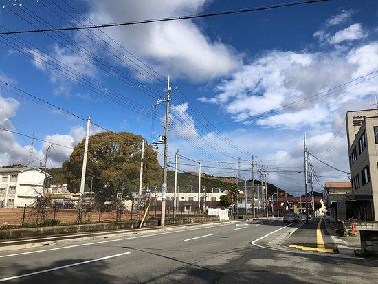 Koyama Castle Ruins