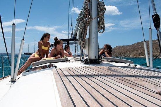 Rhenia island half day sailing...
