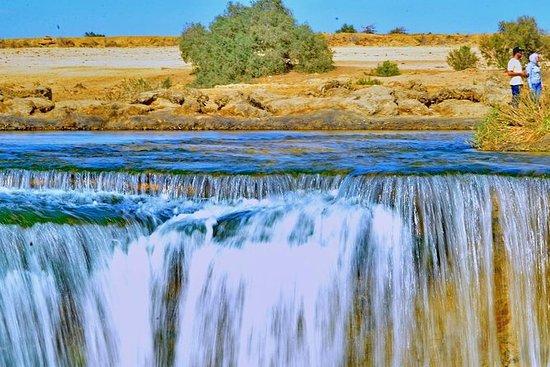开罗El Fayoum Oasis全日游