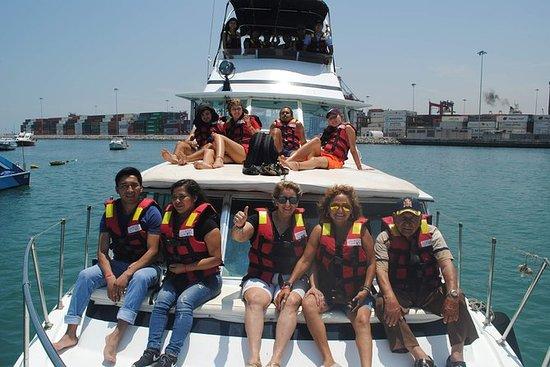Tour en Yate en Islas Palomino for...