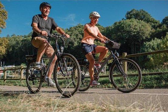 Lei en elektrisk sykkel i Maspalomas...