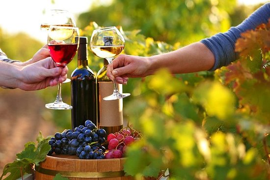 Wine Tour in Baku