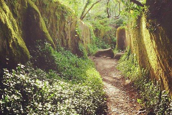 "Private Day Walk: ""Sintra, Kingdom of..."