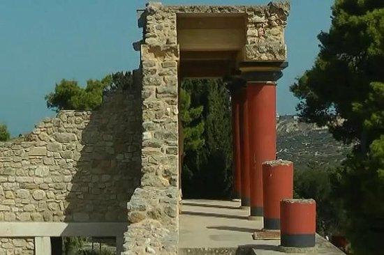 Visita guidata al Museo di Cnosso e