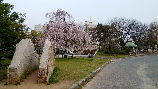 Ishiyama Park: 春には枝垂れ桜と梅が咲く